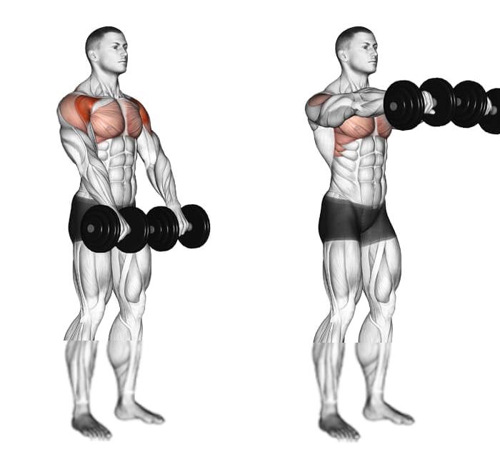 Oefeningen voor de schouder - Front Dumbbell Raise